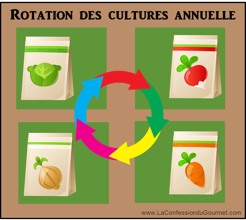 rotation-des-culture