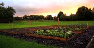 jardin en carré 560_292