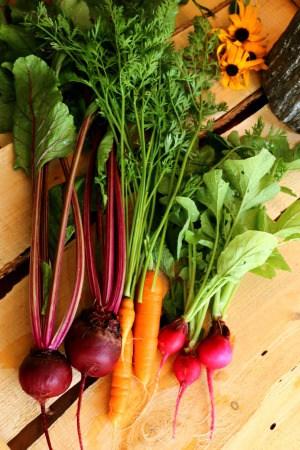 Jardin potager de la Confession du Gourmet 21