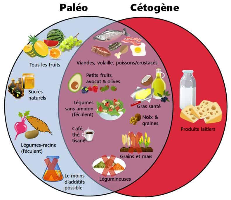 Graphique visuels avec tous les types d'aliments pour le céto et le paléo