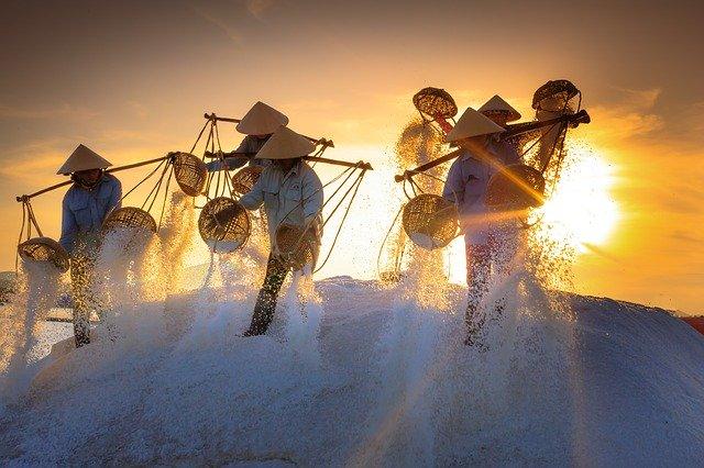 Vietnamiens tamisant du sel avec coucher de soleil en arrière plan