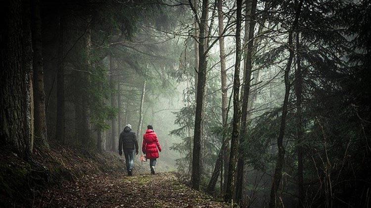 couple marchant sur un sentier dans la forêt paisible
